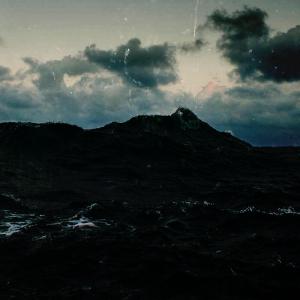 TWH 207 - Sea Creature
